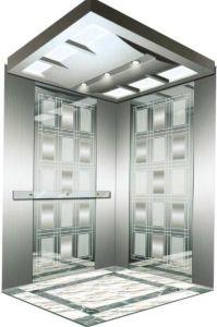 Vvvf Drive Gearless Motor Home Villa Elevator (RLS-116) pictures & photos