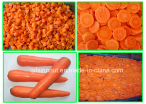 Frozen Carrot pictures & photos