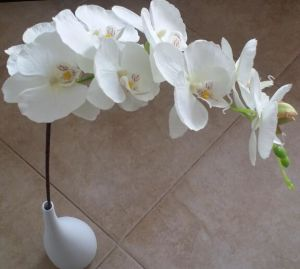 High Quality Artificial Velvet Orchid pictures & photos