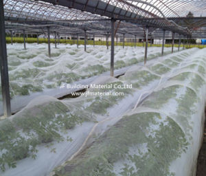 100% New HDPE Agricultural Bird Netting or Greenhouse Insect Proof Net pictures & photos