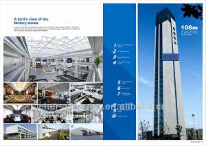 Passenger Elevator/Passenger Lift/Elevator/Elevator Lift/ pictures & photos