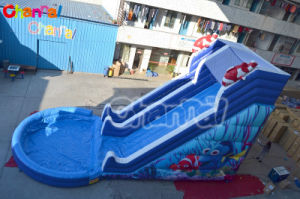 Inflatable Dry Slide Water Slide with Pool Chsl380 pictures & photos
