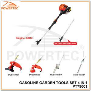 Powertec 4 in 1 52cc Garden Tool Set (PT79001) pictures & photos