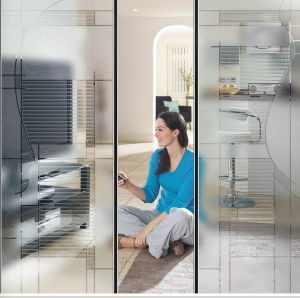 3~12mm Thickness Acid Etched Glass Interior Glass Door pictures & photos