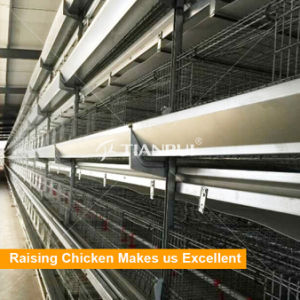 Hot galvanized automatic battery cage for pullets pictures & photos