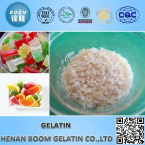 Edible Gelatin for Food Industry pictures & photos