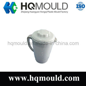 Household Plastic Injection Jug Mould/Mold pictures & photos