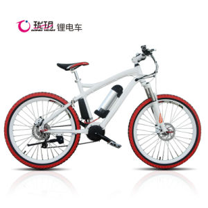 Lithium Power Ebike 2014 (TDE1202Z) pictures & photos