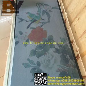 Stainless Steel Security Screen for Window Mesh pictures & photos