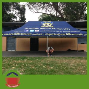 Cheap Wedding Marquee Party Tent for Sale with Printing pictures & photos