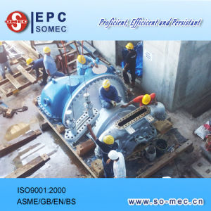 Installation Supervision for Power Plant pictures & photos