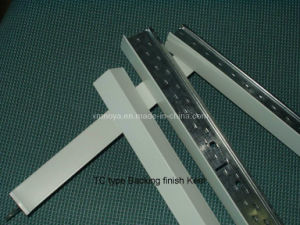 Low Price T- Bar for Suspend System / Budling Structure pictures & photos