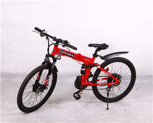 City Bike, Electric Bicycle