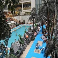 The Professional Manufacturer of Anti-Slip Swimming Pool Flooring for Indoor/Outdoor pictures & photos