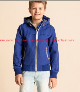 Boy′s Winter Hooded Jacket (B04100) pictures & photos