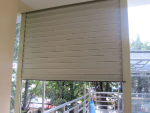 Roller Window Shutter for Residential Usage pictures & photos
