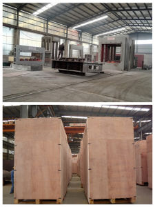 Veneer Production Line pictures & photos