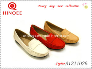 Flat Driving Loafer Lady Shoe (A1311026)