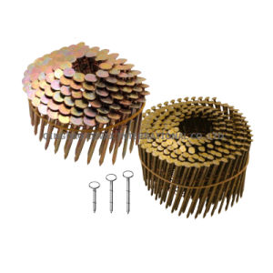 Coil Roofing Nail/Wire Coil Nail/Collated Nail pictures & photos