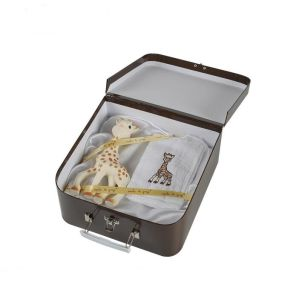 Paper Gift Box/Suitcase Printing Plush Toy Box pictures & photos