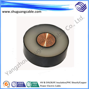High Voltage & Ehv/XLPE Insulation/PVC Sheath/Copper Electric Power Cable pictures & photos