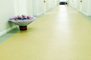 Professional PVC Sheet/ Roll Hospital and Medical Flooring pictures & photos