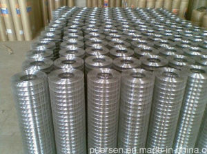 Galvanised Welded Wire Mesh in Anping Supllier pictures & photos