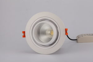 Ce RoHS 12W SMD LED COB Downlight Ceiling Light pictures & photos