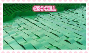 HDPE Geocell /Plastic Geocell /for Soft Soil Reinforce pictures & photos