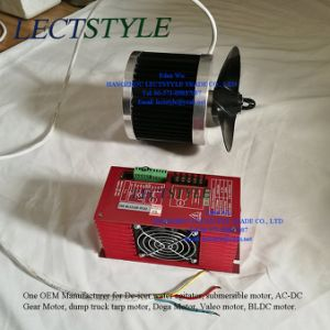 120V 1/2HP 3/4HP BLDC Electrical Submersible Motor on De-Icer Water Circulator Agitator pictures & photos