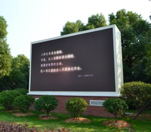 Cheap Outdoor Seven Color LED Display Board for Store Advertising (P10) pictures & photos