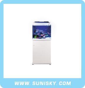Marine Sources Glass Fish Tank/ Aquarium Glass Tank Marine Fish pictures & photos