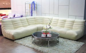 Living Room Genuine Leather Sofa (B-240B) pictures & photos
