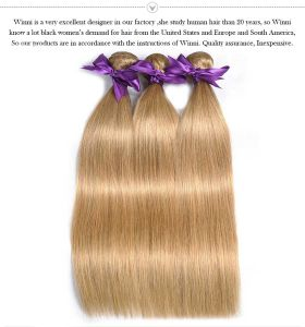 "Brazilian Hair Straight Blonde Hair Weave Color 27# 100% Human Hair Weave Free Shipping 16"" pictures & photos"