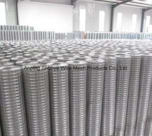 China Supply professional Stainless Steel Welded Wire Mesh/Galvanized Welded Wire Mesh /PVC Welded Wire Emsh pictures & photos