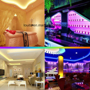 SMD5050 DC 12V Digital Addressable RGB 1903 LED Strip pictures & photos