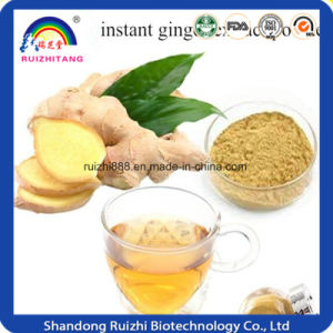 Dried Ginger Extract, Market Price Ginger Extract Powder, 5% Gingerols pictures & photos