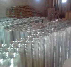 Galvanized, PVC Coated Welded Wire Mesh pictures & photos