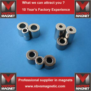 Neodymium Ring Magnet for Cosmetic Cases in Multipole Magnetization pictures & photos