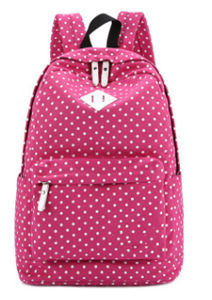 Fashion Bags School Laptop Sports Travel Canvas Backpack pictures & photos