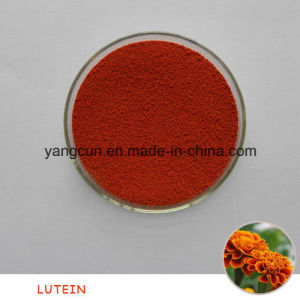 Natural Feed Grade 4% Lutein pictures & photos