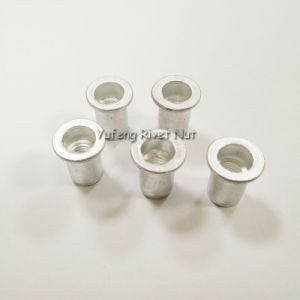 Aluminum Flat Head Rivet Nut with Round Body pictures & photos