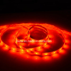 Widely Used for Christmas SMD5050 60LEDs/M RGB LED Strip Light pictures & photos