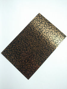 Steel Products Color Decorative Bronze Stainless Steel Plates for Door pictures & photos