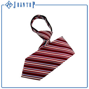 Custom Wholesale High Quality Stripes Zipper Tie pictures & photos