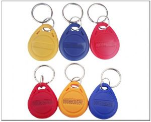 Printable Smart Card RFID Access Control Keyfob Key Chain Tag pictures & photos