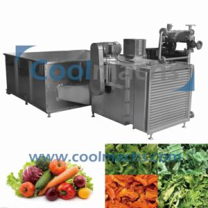 Fruit and Vegetable Drying Machine/Hot Air Dryer pictures & photos