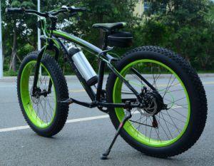 36V Snow Bike/Skibob or Snowbiking pictures & photos