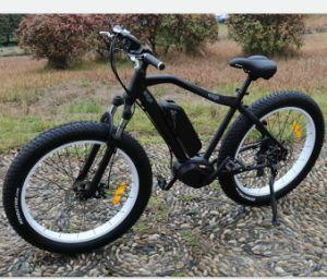 Middle Motor 500W Electric Bicycle pictures & photos