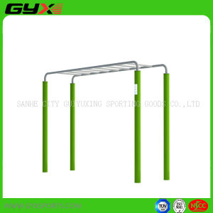 Outdoor Gym Equipment of Horizontal Ladder pictures & photos